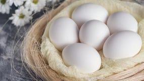 Αυγά Πάσχας στα άσπρα λουλούδια φωλιών και άνοιξη στο γκρίζο υπόβαθρο Τοπ όψη Στοκ φωτογραφίες με δικαίωμα ελεύθερης χρήσης