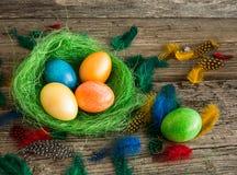 Αυγά Πάσχας στην πράσινη φωλιά Στοκ εικόνα με δικαίωμα ελεύθερης χρήσης