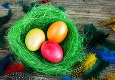 Αυγά Πάσχας στην πράσινη φωλιά Στοκ Εικόνες