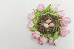 Αυγά Πάσχας στη φωλιά και τις τουλίπες Στοκ Εικόνες