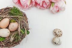 Αυγά Πάσχας στη φωλιά και τις τουλίπες Στοκ εικόνες με δικαίωμα ελεύθερης χρήσης