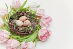 Αυγά Πάσχας στη φωλιά και τις τουλίπες Στοκ Φωτογραφία