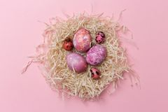 Αυγά Πάσχας στη φωλιά στο ρόδινο υπόβαθρο Σύσταση Πάσχας στοκ εικόνα