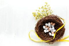 Αυγά Πάσχας στη φωλιά στην άσπρη χλεύη άποψης υποβάθρου τοπ επάνω Στοκ Φωτογραφίες