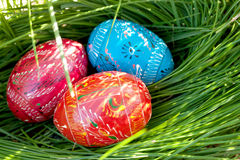 Αυγά Πάσχας στη φωλιά Στοκ εικόνες με δικαίωμα ελεύθερης χρήσης