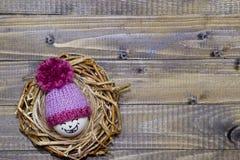 Αυγά Πάσχας στη φωλιά Emoticons στα πλεκτά καπέλα με τα pom-poms Στοκ Εικόνες