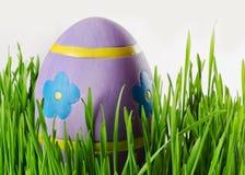 Αυγά Πάσχας στη χλόη Στοκ Φωτογραφία