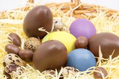 Αυγά Πάσχας στο αγρόκτημα στοκ εικόνες