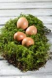 Αυγά Πάσχας στο βρύο, φωλιά Πάσχας Στοκ Φωτογραφία
