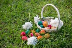 Αυγά Πάσχας στο καλάθι Στοκ Εικόνα