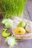 Αυγά Πάσχας των διαφορετικών χρωμάτων που βρίσκονται στον πίνακα δίπλα στην πράσινη φρέσκια χλόη Στοκ Φωτογραφία