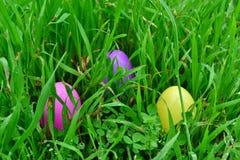 Αυγά Πάσχας Στοκ Φωτογραφία