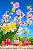 Αυγά Πάσχα στη σειρά στο άχυρο με το άνθος ροδάκινων Στοκ εικόνα με δικαίωμα ελεύθερης χρήσης