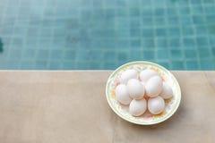 Αυγά παπιών στην άκρη πισινών, ευτυχές αυγό, υγιής τρόπος ζωής στοκ εικόνα με δικαίωμα ελεύθερης χρήσης