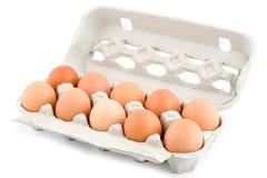 αυγά περίπτωσης προστατευτικά Στοκ Φωτογραφία