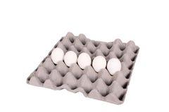 αυγά περίπτωσης στοκ εικόνα