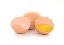 Αυγά που απομονώνονται Στοκ φωτογραφίες με δικαίωμα ελεύθερης χρήσης