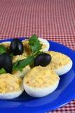 αυγά που γεμίζονται Στοκ εικόνες με δικαίωμα ελεύθερης χρήσης