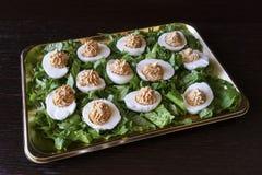 αυγά που γεμίζονται Στοκ φωτογραφία με δικαίωμα ελεύθερης χρήσης