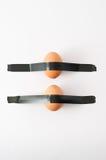 αυγά που παγιδεύονται Στοκ Εικόνες