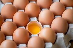 Αυγά που σπάζουν στη συσκευασία Στοκ Εικόνες