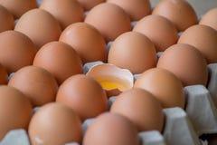 Αυγά που σπάζουν στη συσκευασία Στοκ Φωτογραφία