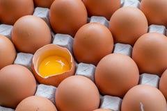 Αυγά που σπάζουν στη συσκευασία Στοκ Εικόνα