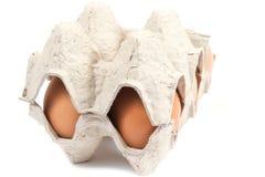 αυγά που συσκευάζοντα&i Στοκ Φωτογραφία