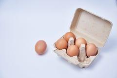 Αυγά που τίθενται στο κιβώτιο Στοκ Εικόνες