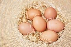 Αυγά που τίθενται στο thatch Στοκ εικόνα με δικαίωμα ελεύθερης χρήσης