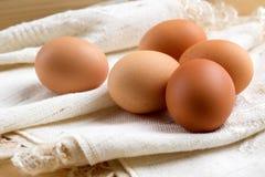 Αυγά που τυλίγονται καφετιά στο ύφασμα Στοκ Φωτογραφία