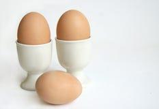 αυγά προγευμάτων Στοκ Εικόνες
