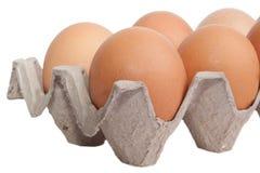 Αυγά σε ένα κιβώτιο χαρτοκιβωτίων που απομονώνεται στο άσπρο υπόβαθρο Στοκ φωτογραφία με δικαίωμα ελεύθερης χρήσης