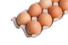 Αυγά σε ένα κιβώτιο χαρτοκιβωτίων που απομονώνεται στο άσπρο υπόβαθρο Στοκ εικόνες με δικαίωμα ελεύθερης χρήσης