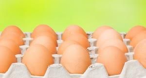 αυγά σιτηρεσίου ακατέργ&a Στοκ Εικόνα
