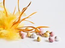 Αυγά σοκολάτας Πάσχας με το κίτρινο φτερό Στοκ φωτογραφία με δικαίωμα ελεύθερης χρήσης