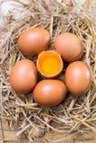Αυγά στην ξύλινη ανασκόπηση Στοκ Φωτογραφία