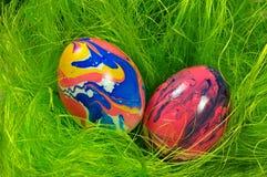 Αυγά στην πράσινη φωλιά στοκ εικόνα