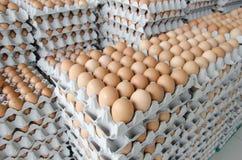 Αυγά στη συσκευασία του γκρίζου εγγράφου Στοκ Εικόνες