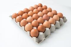 Αυγά στη συσκευασία χαρτοκιβωτίων Στοκ Εικόνες