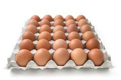 Αυγά στη συσκευασία χαρτοκιβωτίων Στοκ εικόνα με δικαίωμα ελεύθερης χρήσης