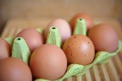 Αυγά στη συσκευασία Στοκ εικόνες με δικαίωμα ελεύθερης χρήσης