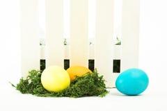 Αυγά στη φωλιά για Πάσχα Στοκ Εικόνα