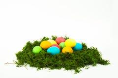 Αυγά στη φωλιά για Πάσχα Στοκ Εικόνες