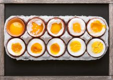 Αυγά στις ποικιλίες βαθμών της διαθεσιμότητας ανάλογα με το χρόνο των βράζοντας αυγών στοκ εικόνα με δικαίωμα ελεύθερης χρήσης