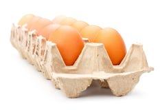 Αυγά στο δίσκο Στοκ εικόνα με δικαίωμα ελεύθερης χρήσης