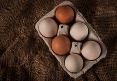 Αυγά στο εμπορευματοκιβώτιο Στοκ Φωτογραφία