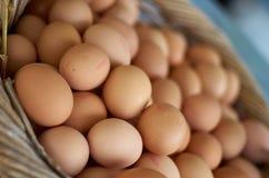 Αυγά στο καλάθι Στοκ Εικόνες
