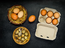 Αυγά στο κιβώτιο και τη φωλιά Στοκ εικόνες με δικαίωμα ελεύθερης χρήσης