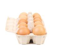 Αυγά στο προστατευτικό πρώτο πλάνο περίπτωσης Στοκ Φωτογραφία
